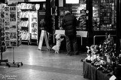 Shopping (Joe M. Photography) Tags: street city people urban blackandwhite dog white black graffiti blackwhite stuttgart strasse human 0711 streephotography stuggi strassenfotografie strasenfotografie