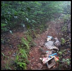 Ganpati idols thrown in forest (indianature13) Tags: maharashtra mahabaleshwar westernghats indianature india september 2016 monsoons nature monsoon pollution ganpati forest visarjan