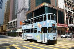 Hong Kong Tramways 145 (Daikin) (Howard_Pulling) Tags: hongkong tram 2016 september hk china bus buses howardpulling nikon d7200 camera picture transport asia