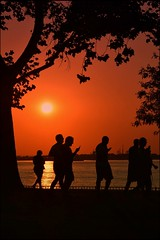 Pokmon Goers! (dianealdrich - Please read my updated profile) Tags: silhouette people pokmon goldensunset goldenhour sunset pokmongo pokmongoers humor humorous game recreational recreation fun funny cellphone app lifestyle activity redbankbattlefield nationalparknewjersey