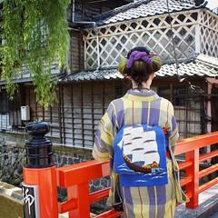 IMG_0543 (SALZ Tokyo) Tags: nihongami  japanesehair