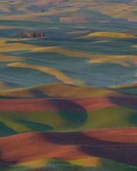 The Palouse (Bob Bowman Photography) Tags: palouse washington nikon hills landscape farmland crops sunrise field green red wheat light easternwashington missilelauncher