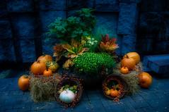 preparation halloween party (Leguman vs the Blender) Tags: nyc usa flickrunitedaward