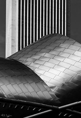 Steel and Stone (rjseg1) Tags: pritzker pavilion standardoil building architecture gehry chicago