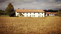 Le Langhe ... (Augusta Onida) Tags: tartufo alba piemonte italia italy campagna country casale countryhouse mulino mill white truffle patrimonio heritage unesco
