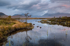 A Fine Autumn Morning at Achlaise (Damon Finlay) Tags: scottish highlands scottishhighlands glencoe lochan na hachlaise lochannahachlaise rannoch moor rannochmoor islands highlandsandislands scotland mountains wilderness black mount blackmount nikon d750 nikond750 tamron 2470 f28 tamron2470f28 natural beauty naturalbeauty landscape earlymorning dawn