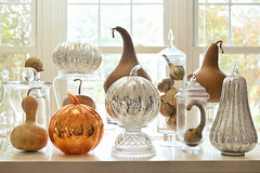Oh My Gourd, Its Fall Ya'll (Chickens in the Trees (vns2009)) Tags: gourds mercuryglass stilllife pumpkins glass apothecary jars crystal falldecor thanksgiving holiday sunshine shiny glitter