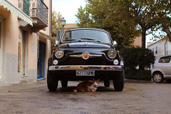 In the Italian streets  (Marek Kalich) Tags: historical car vintage old cat strreet italy elba summer colorful ride