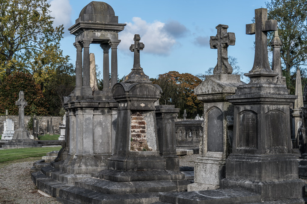 A QUICK VISIT TO GLASNEVIN CEMETERY[SONY F2.8 70-200 GM LENS]-122088