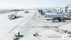 Frontier Capital (tkolos) Tags: frontier denver colorado airbus a321 n708fr terminal avgeek aviation travel flying airplane gate airport