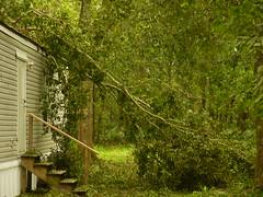 00000017 (wileenrodriguez) Tags: hurricane gustave