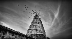 Temple Tower (Padmanabhan Rangarajan) Tags: belur halebidu statues temple architecture india hoysala south