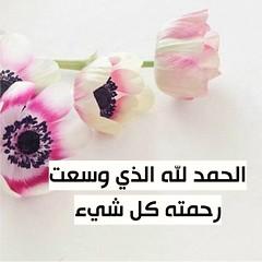 #_ # # #_ # # # # # # # # # # # #_ #_ #__ # # # # # # # # # # #saudi () Tags:                saudi