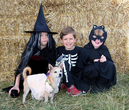 Photo - Howl-O-Ween-2016-265
