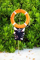 Safety Comes First (ClickSnapShot) Tags: ilobsterit float safety beach lifejacket sandybeach green orange leaves seaside maldives tropicalisland sheratonmaldives