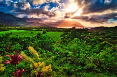 Hope (Kalyana Kavuri) Tags: clouds landscape sunset beautiful bliss cloudscape green hanalei hawaii hdr hdrphotography kauai landscapephotography lushgreen mountains nature pacific rays serene skies sunrays sunsetphotography vegetation village wideangle