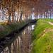 La Sèquia Segona del Canal d'Urgell, a Bellestar