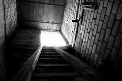 Ladder (-Aldievel-) Tags: italy blackandwhite light italia countryside monochrome home scala campagna molise ladder rural biancoenero casa luce