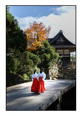 Girls on a bridge (Adrian Tischler) Tags: japan temples kyoto girls walking