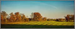 Bumpy fields (Peter Leigh50) Tags: sunshine trains autumn field bumpy leicestershire wistow newton harcourt