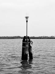 "La ""ruta"" de Venecia. (Leandro Fridman) Tags: agua pilar venice venecia blancoynegro bw blackwhite byn monocromtico monocromo monochrome airelibre italia nikon d60"