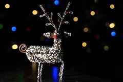 Tis The Season (Cindy's Here) Tags: reindeer spareparts christmas holiday canon macro ansh scavenger12 handmadegift seasonal sc1216 53365 msh121612 msh1216