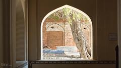 Peer through (UJMi) Tags: multan pakistan punjab travel culture history religion islam sufi saint saints mausoleum