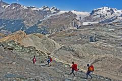 Going down from the Cabane of Matterhorn& Hörnli, infront of us the Gornergrat and Monte Rosa. No. 1786. (Izakigur) Tags: cervin cervino zermatt helvetia flickr switzerland schwyz swiss nikon nikkor dieschweiz feel suiza liberty lepetitprince europa europe svizzera suizo suïssa suisia sch lasuisse climb every mountain ch cantonduvalais kantonwallis wallis izakigur fixyou myswitzerland musictomyeyes d200 summer switzerlnad