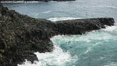 Natural Wonders: Parts of Daepo Jusangjeolli Cliff (Mizzlynx) Tags: jeju jejudo jejuisland nature sea island lavabed cliff unesco lavacliff jusangjeolli