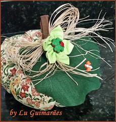 20150816_213010 (Artesanato com amor by Lu Guimaraes) Tags: artesanato fuxico decoração tecido enfeitecozinha