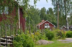 gärdesgård (nirak68) Tags: wood fence urlaub schweden zaun holz garten radtour edeby västragötalandslän gärdesgård 215365 klarälvsbanan c2015karinslinsede