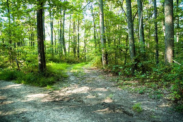 Sierra Club Leadership Hike - August 24, 2015