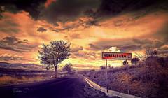 Goodbye Montalbano J (* landscape photographer *) Tags: road sunset italy tree colors clouds europe flickr strada tramonto nuvole creative sigma valle valley sa sasi albero vivi 1020 colori paesaggio salvo lucania 2015 creazione dagri nikond40 landscapephotographer montalbanojonico salvyitaly