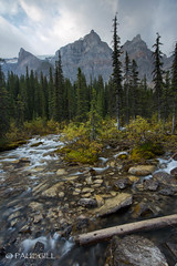 Moraine Lake cascade-133.jpg (paulgillphoto) Tags: canada rockymountains banffnationalpark morainelake valleyofthetenpeaks