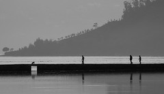 Path (andreaalonso96) Tags: ocean shadow sea blackandwhite dog reflection water path human rithm