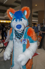 DSC_9848 (Acrufox) Tags: chicago illinois furry midwest december ohare rosemont convention hyatt regency 2014 fursuit furfest fursuiting acrufox mff2014