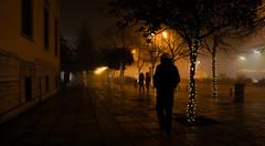 Βόλτα στην ομίχλη (nikolasga) Tags: christmas xmas fog night sony backlighted 2015 ioannina ομίχλη ιωαννινα nex5 mysteriousapo sageapo