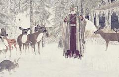 TAOX TATTOO CHRISTMAS 6 (taox_novaland) Tags: