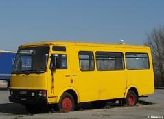 Fiat A 55 F 10 School Bus (Alessio3373) Tags: bus abandoned rust fiat neglected rusty forgotten rusted pullman schoolbus autobus abandonment unloved unused scuolabus fiata55f10