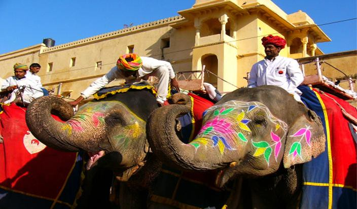 Supreme-Court-issued-notice-on-Elephant-Safari-to-Rajasthan-government