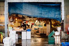 Tsukiji Market (Julien Simery) Tags: japan tokyo market auction tsukiji tuna tsukijimarket