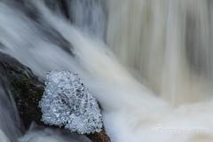 20151230_052 (JukkaKosonen) Tags: longexposure winter ice talvi rapid j koski kemppilnmyllykoski