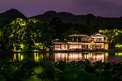 the tea garden (Jixin YU) Tags: viewing night natural landscape nature fish leaf outdoor lake hangzhou light garden westlake plant water excursion g20 travel tree tourism teahouse beautiful green pond rain lotus flower
