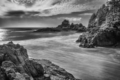 Cox-Bay (Klaus1953) Tags: meer sea langzeitbelichtung longexposure insel halbinsel bucht bay island felsen rock rocks coxbay vancouverisland tofino schwarzweis blackandwhite bw sw wasser water bume trees kste coast