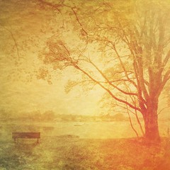 Autumn series (Nick Kenrick.) Tags: autumn tree magicunicornverybest