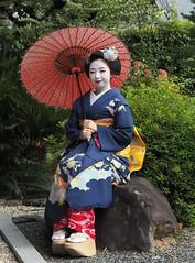 Maiko20161016_12_05 (kyoto flower) Tags: eiunin temple toshimomo kyoto maiko 20161016     hirokunidoi