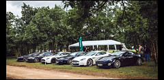 Aston Martin Gentleman Driver (Laurent DUCHENE) Tags: peterauto dijonprenois grandprixdelagedor 2016 aston martin vanquish db9 v8 v12 vantage db7