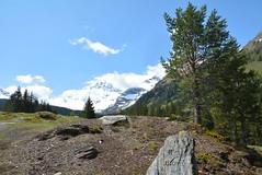 DSC_4009 (d90-fan) Tags: rauris raurisertal natur alpen salzburgerland österreich nationalpark npht hohe tauern wandern krumltal seidlwinkeltal