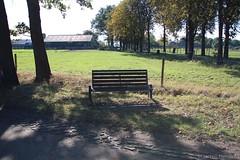 bos 2016_10_16-14_20_51-IMG8040- (hendriks.maarten) Tags: bankje herfst2016 chaam noordbrabant nederland nl