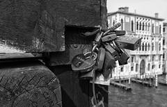 Promises of Love (Frags of Life) Tags: rialto venice lovelocks canal bridge bokeh